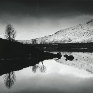 Three Trees, Rannoch Moor