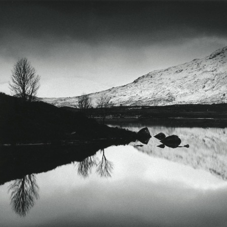 Three Trees, Rannoch Moor